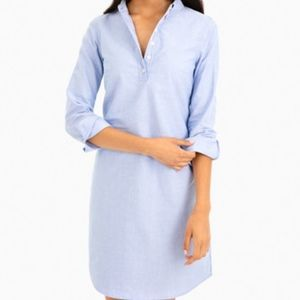 Oxford Shirting Dress